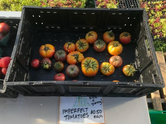 A box of fruit and vegetables on display  Description automatically generated