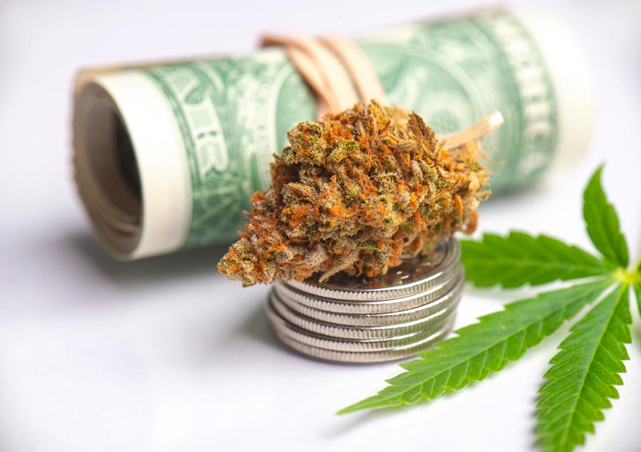 Tips to Bear in Mind While Buying Weed Online in Canada