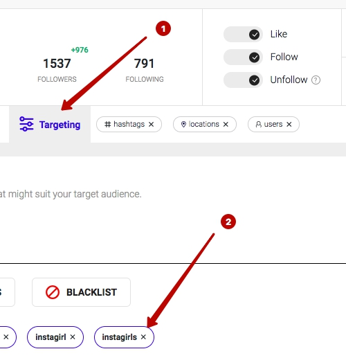 Ingramer settings for Instagram promotion 24
