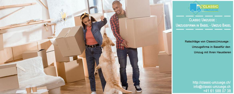 Ratschläge von Classic Umzuege : Umzugsfirma in Basel für den Umzug mit Ihren Haustieren