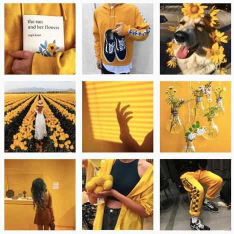 exemple-tons-jaune-feed-instagram