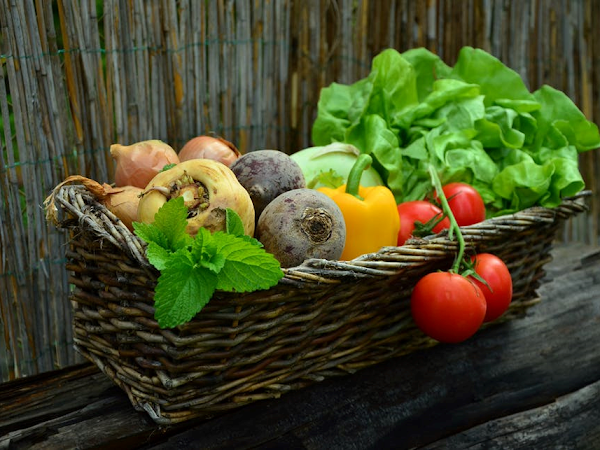 Can You Get Enough Nutrients From A Plant Based Diet?