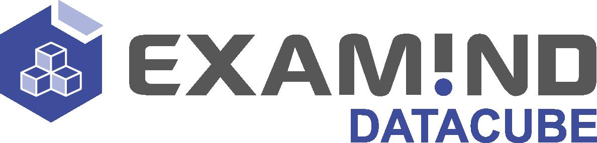 logo Examind Datacube
