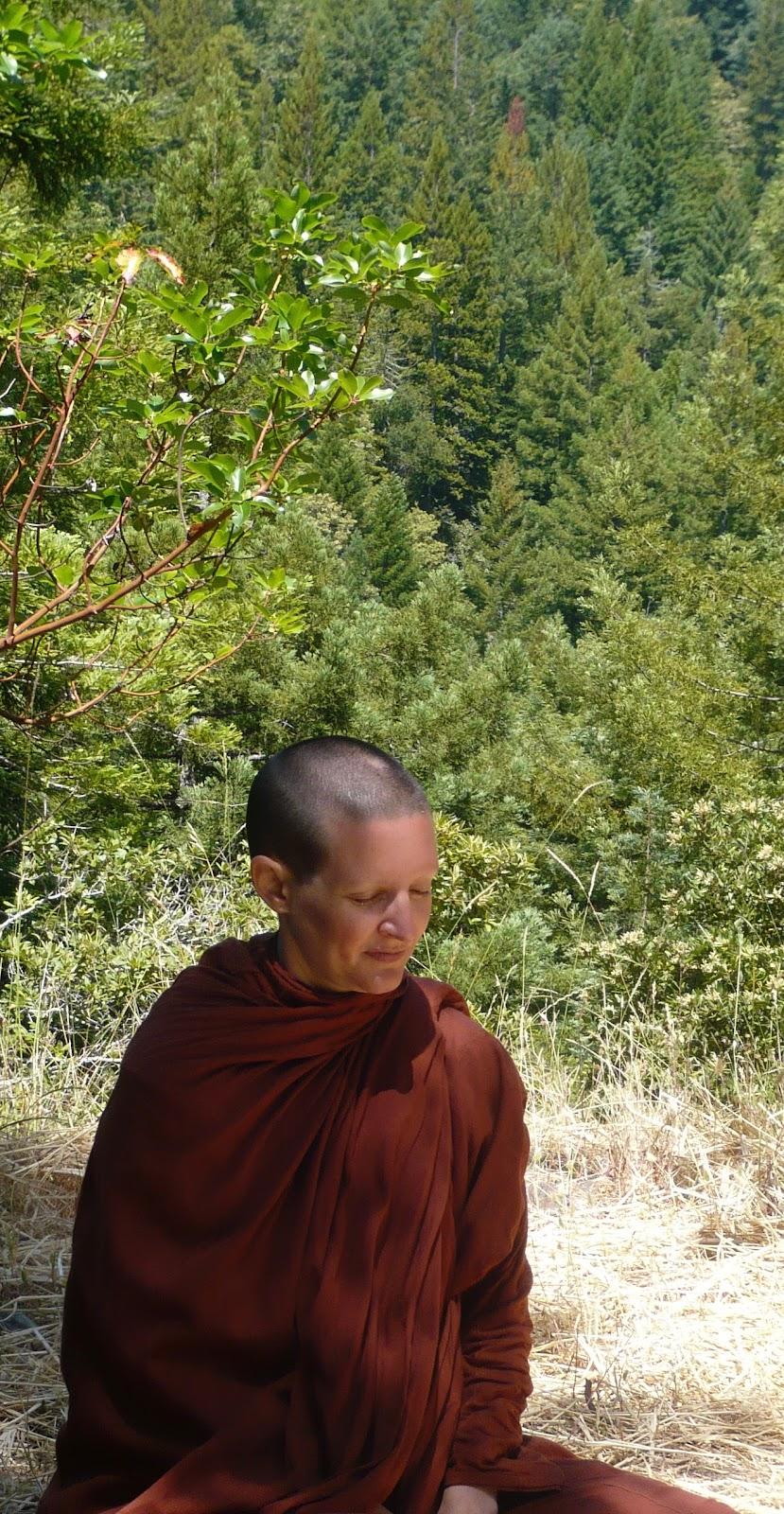 meditation aranya bodhi.jpg