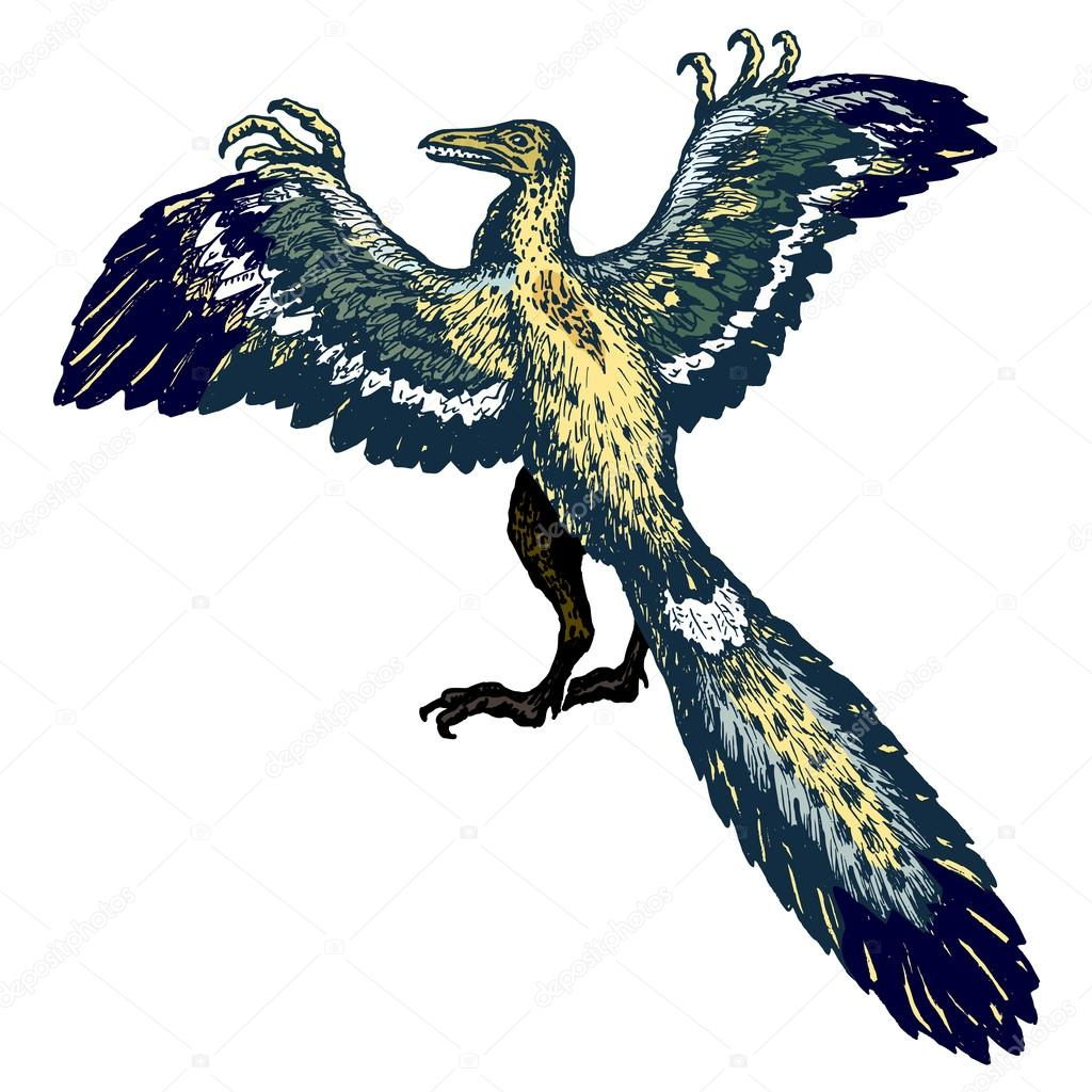 Tengase Presente: Archaeopteryx