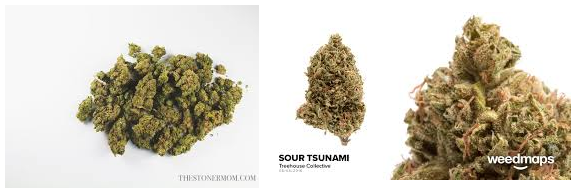 SOUR TSUNAMI MARIJUANA STRAIN WITH CBD