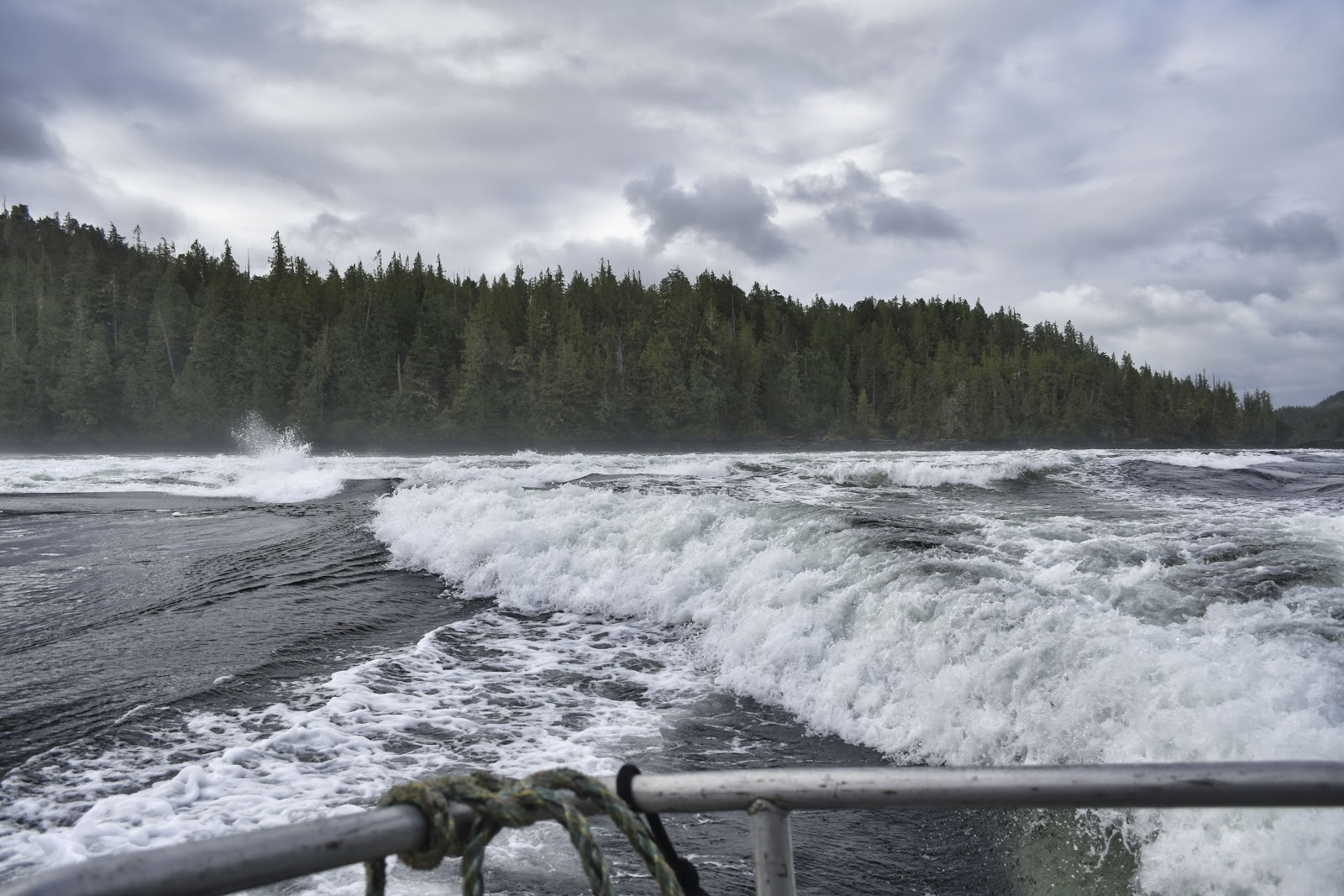 The Nakwakto rapids in Port Hardy