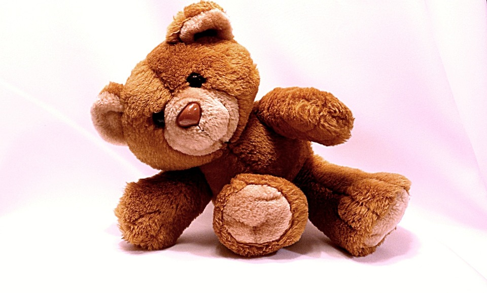 bear-678606_960_720.jpg