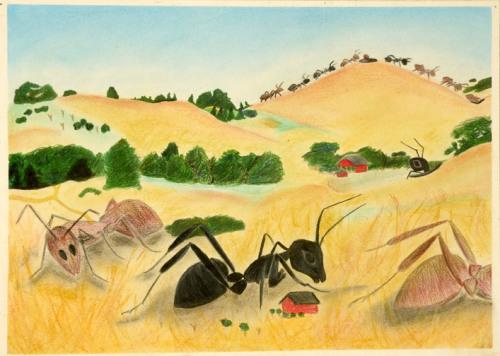B-ants_landscape