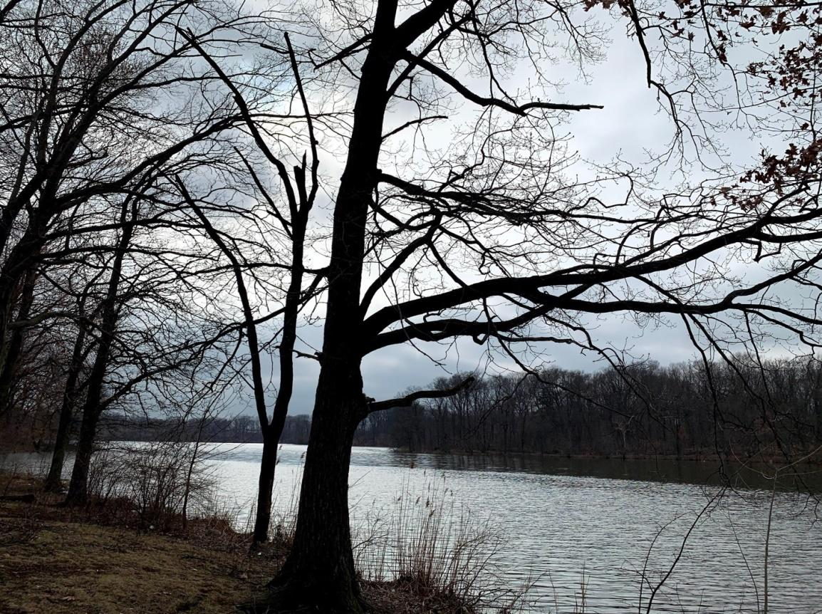 Weequahic lake.