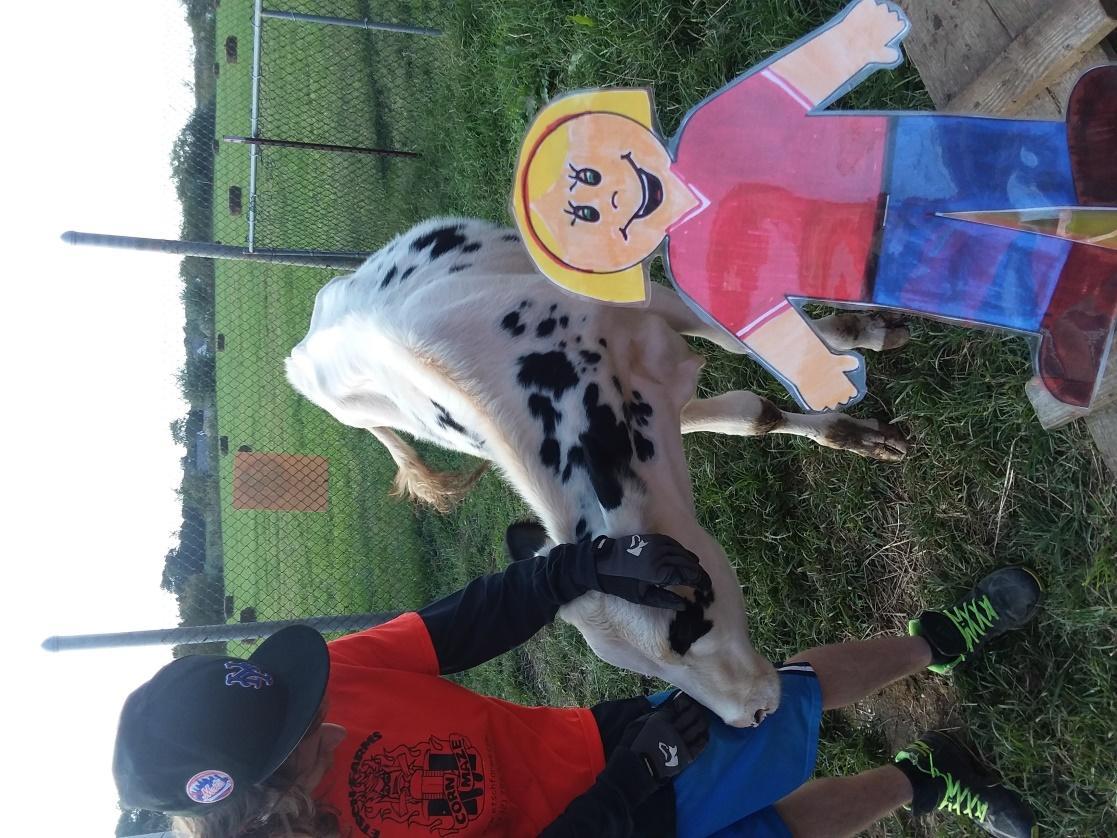 Tales of a Kansas Farm Mom