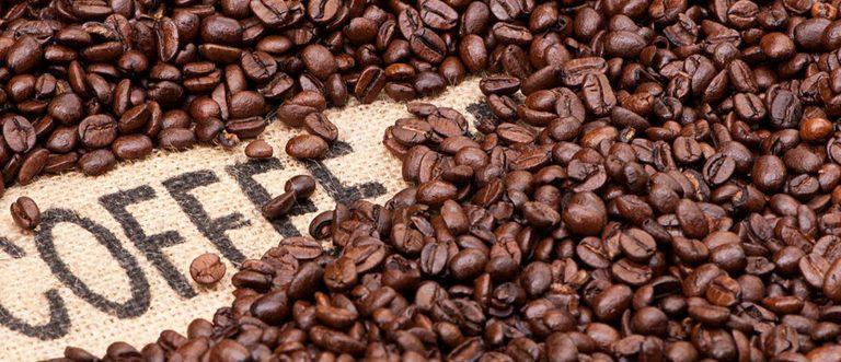 Cà phê dần trở thành loại đồ uống phổ biến tại Việt Nam