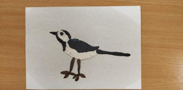 F:\Птицы\фото в группе\15.jpg