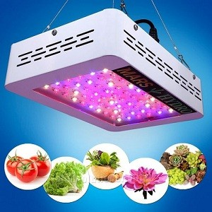 Growing led light power efficiency