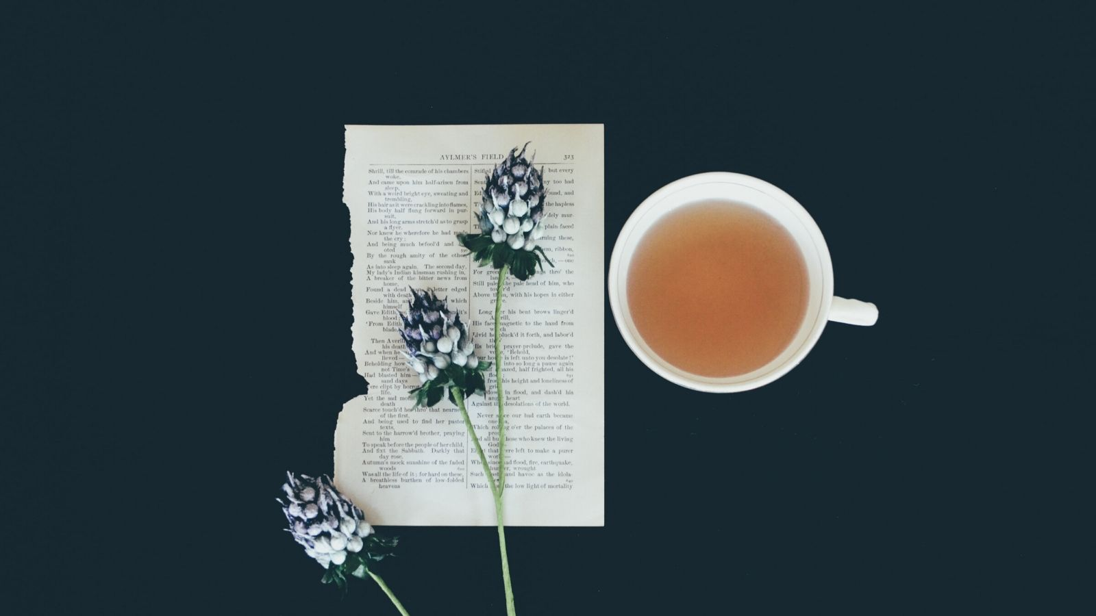 Herbs and herbal tea arranged with a book page