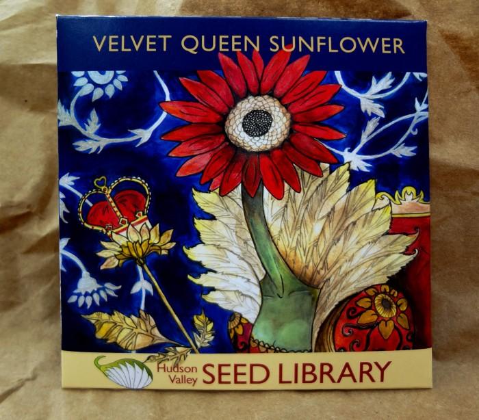 seeds horizons homework help