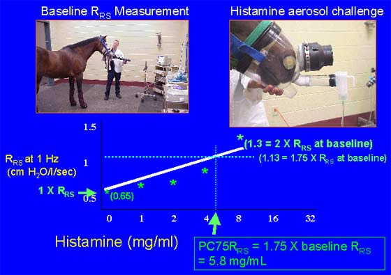 Shown is the method for interpolation of a dose-response curve.