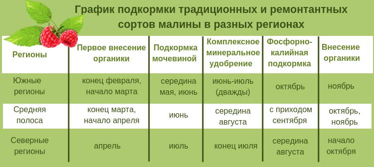 График подкормки традиционных и ремонтантных сортов малины в разных регионах