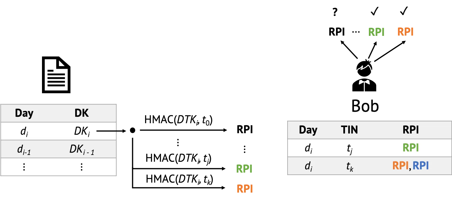 Each participant iterates through the list of Diagnosis Keys and computes the corresponding Rolling Proximity Identifiers. They then check whether they have seen that RPI in the past, in which case they know they might be infected