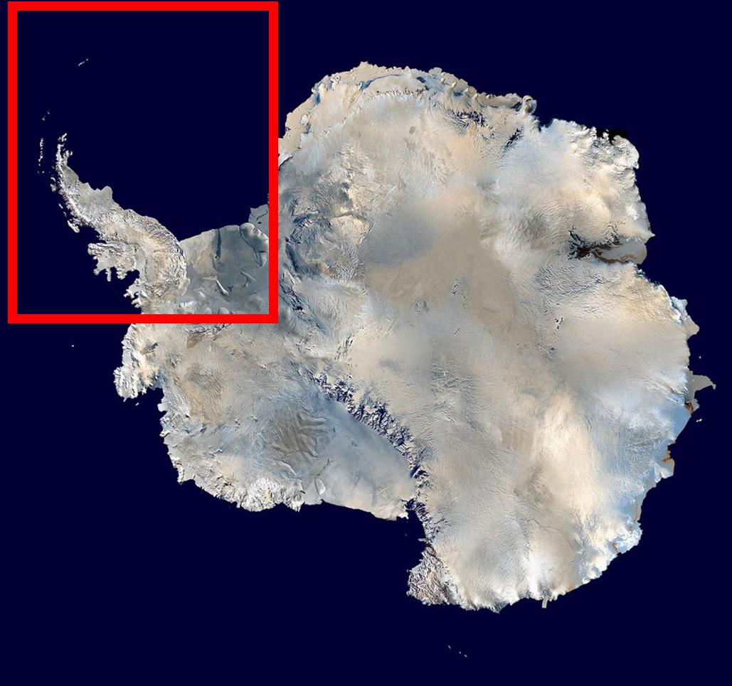 Zona de la Antártida donde la San Telmo sería arrastrada.