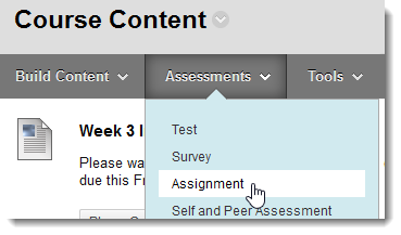 assignment.png