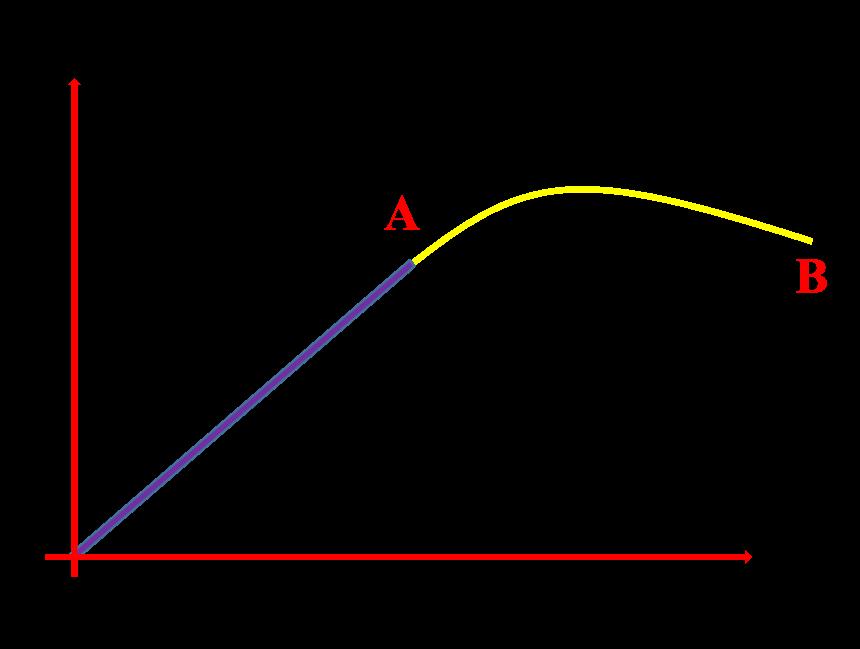 elasticity notes class 11