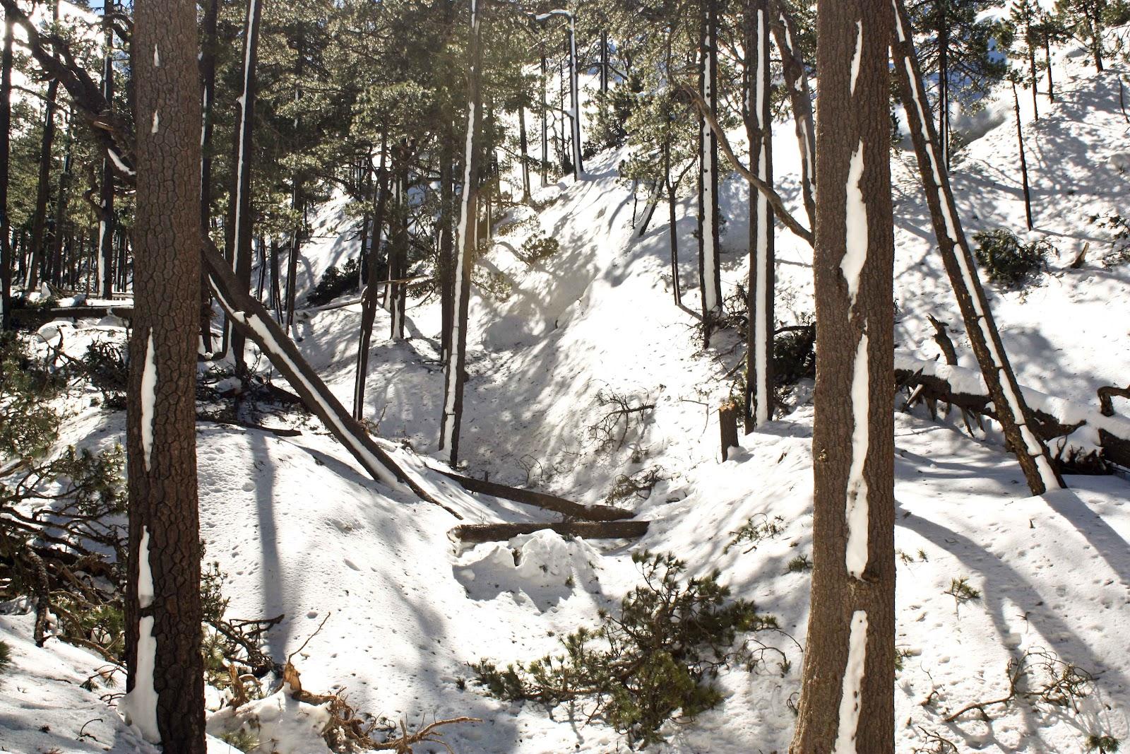Nevado-de-Toluca-Invierno-3.jpg