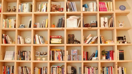 Bookshelves with books and ornaments