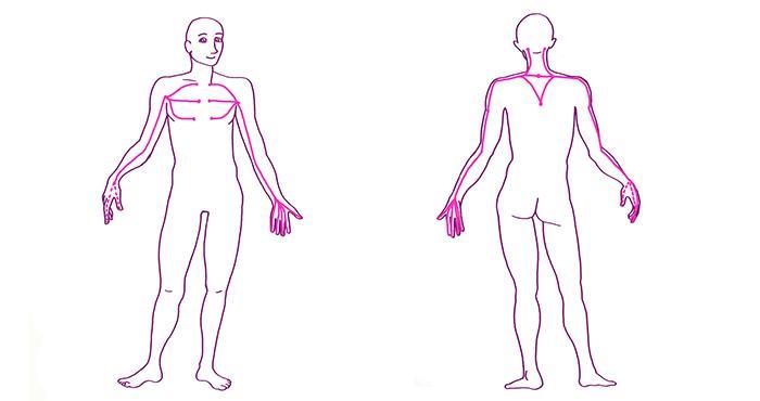 https://fasciaguide.com/wp-content/uploads/2019/11/007-Fascia-Guide-Fascia-Deep-Front-Arm-Line-Deep-Back-Arm-Line.jpg