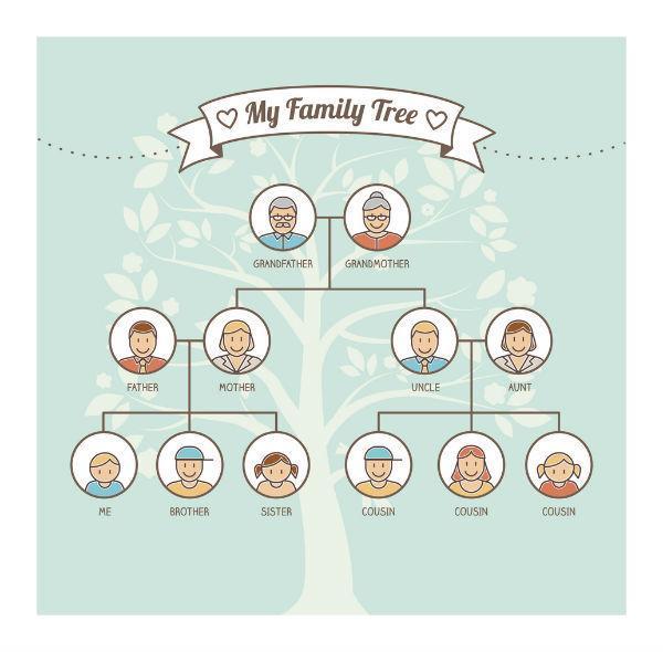family tree genetics chart