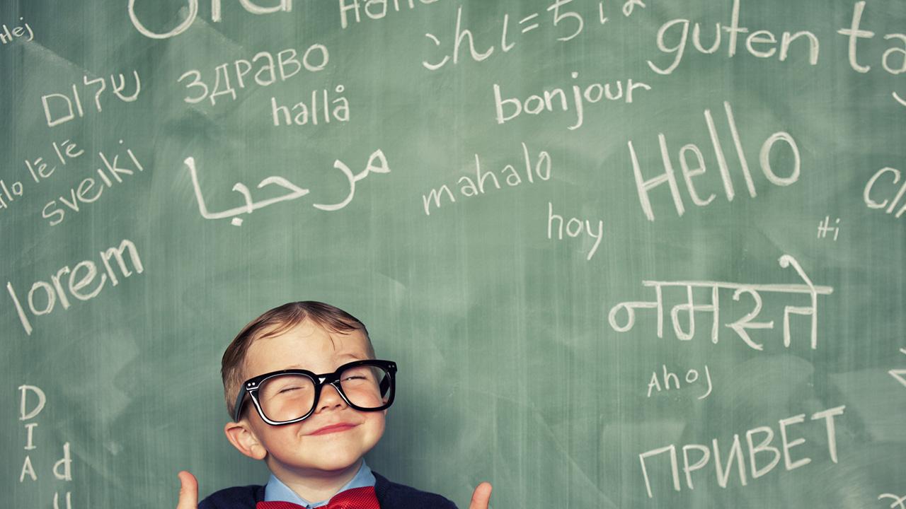 French international language Bansal