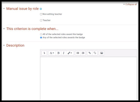 Screenshot showing manual issue by role, criterion, and description fields