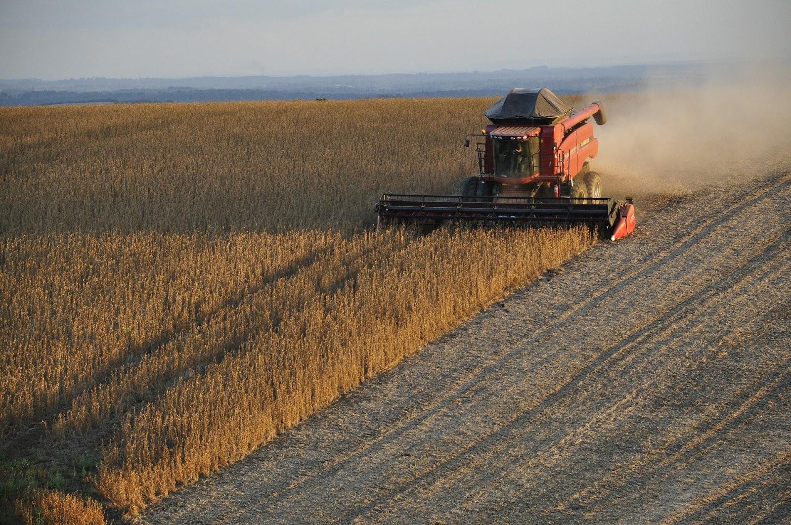 China foi destino de 73% da soja exportada brasileira (Fonte: Pixabay)