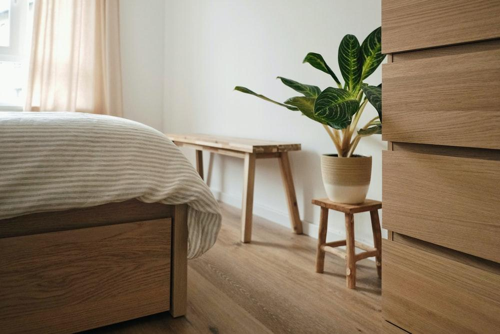 green plant on brown wooden table
