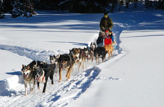 Que faire à la montagne l'hiver ?