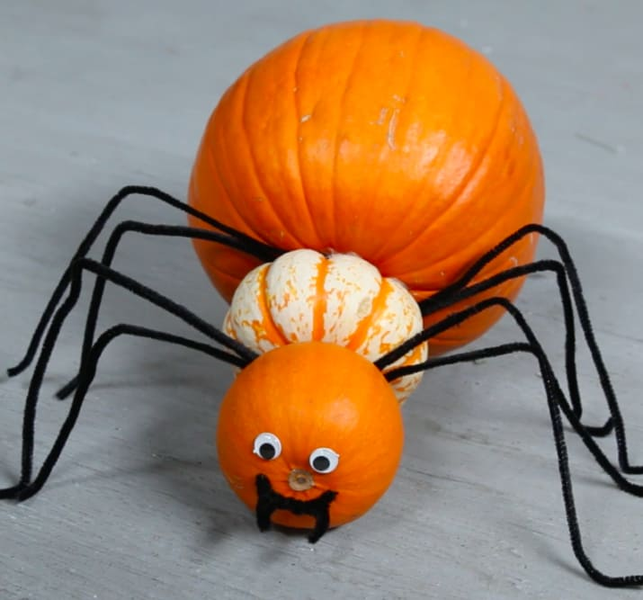 "MATERIALS1 large pumpkin1 medium pumpkin1 small pumpkin2 toothpicks9 pipe cleaners2 googly eyesStaplerGlueINSTRUCTIONS1. Bend pipe cleaners into the shape of a spider's leg.2. Staple four ""legs"" to the bottom of the large pumpkin. 3. Stick a toothpick into the large pumpkin and put a ring of glue around it. Push the medium pumpkin onto the toothpick. 4. Repeat steps two and three with a smaller pumpkin.5. Stick googly eyes above the stem.6. Cut a pipe cleaner into a smile with fangs and glue."