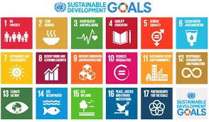 UN SDG Support