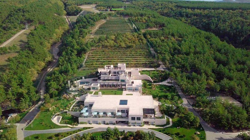 Путинский спа-комплекс посреди виноградников