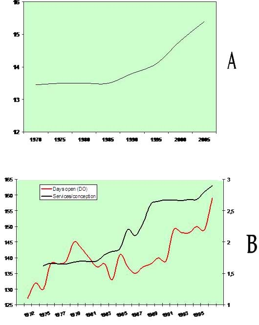 (A) Average calving interval (CI, months) in American Holstein cows for the period 1970–2005 (Source: Oltenacu & Algers, Ambio 34, 2005, www.ambio.kva.se, modified); (B) Changes in days open (DO) and services per conception in 73 Holstein herds in Kentucky, USA 1972–1996 (modified from Silvia WJ, J Dairy Sci 81, Suppl 1, 2003, with permission).