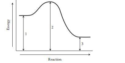 energy and reaction graph