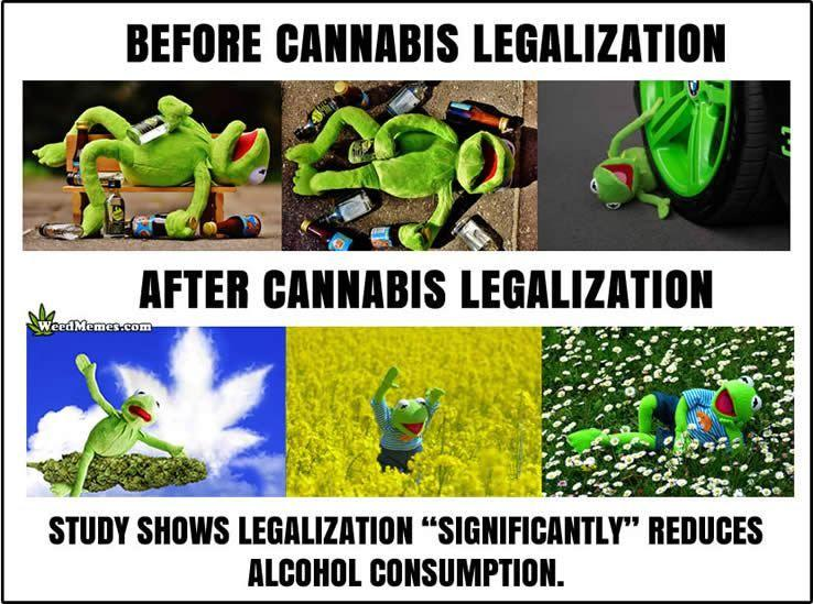 its not weed.jpg