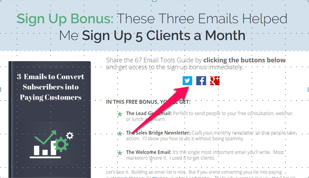 How to Create a Lead Magnet to Grow Your Email List Fast - Entice Blog