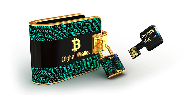 Digital wallet untuk menyimpan aset digital anda