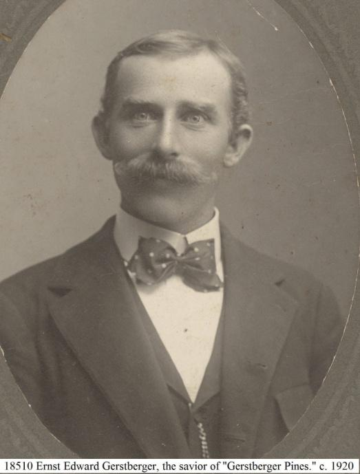 C:\Users\Robert P. Rusch\Desktop\II. RLHSoc\Documents & Photos-Scanned\Rib Lake History 18500-18599\18510.jpg