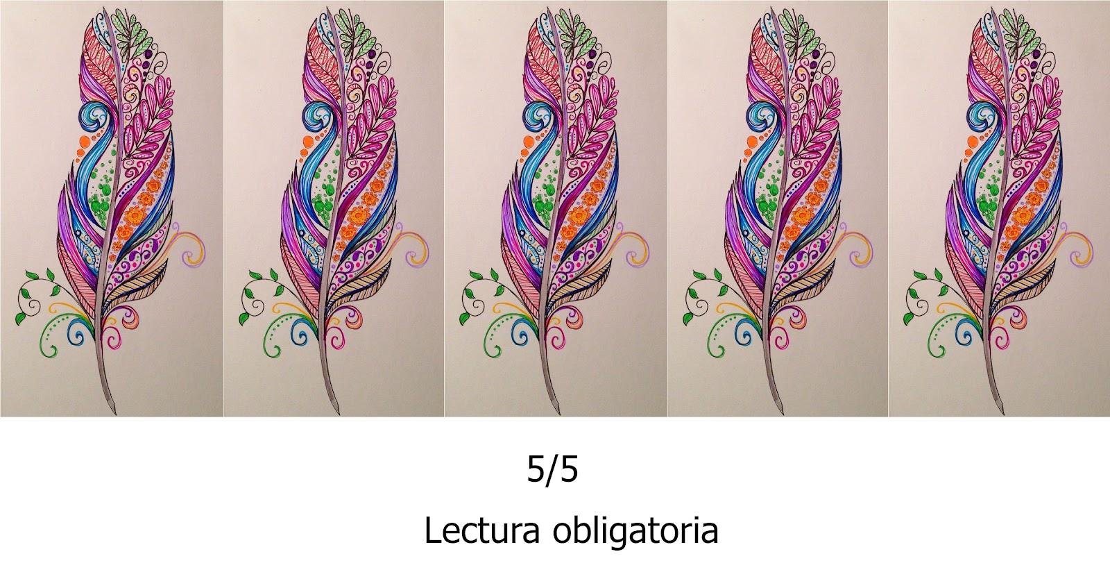 5 de 5.jpg