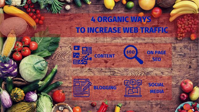 digital marketing organic marketing web traffic