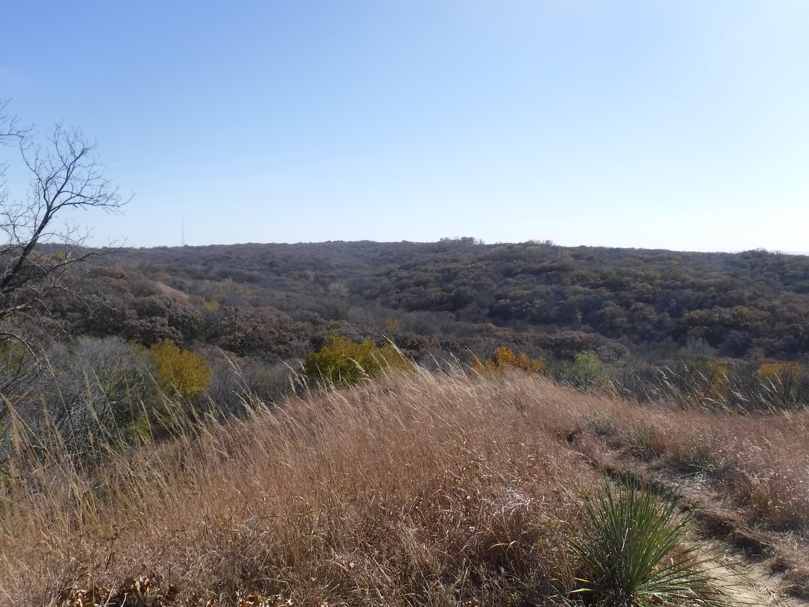 Things to do in Sioux City, Iowa - Hike the Stone State Park, a scenic park in the Loess Hills