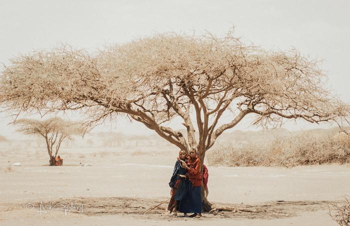 Фотографии Занзибара от местного художника.