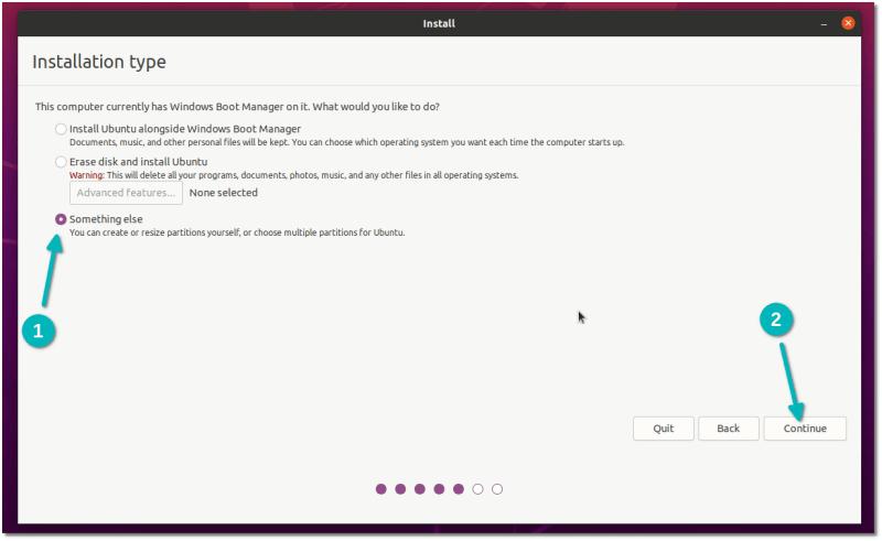 выберите что-нибудь другое, устанавливая ubuntu