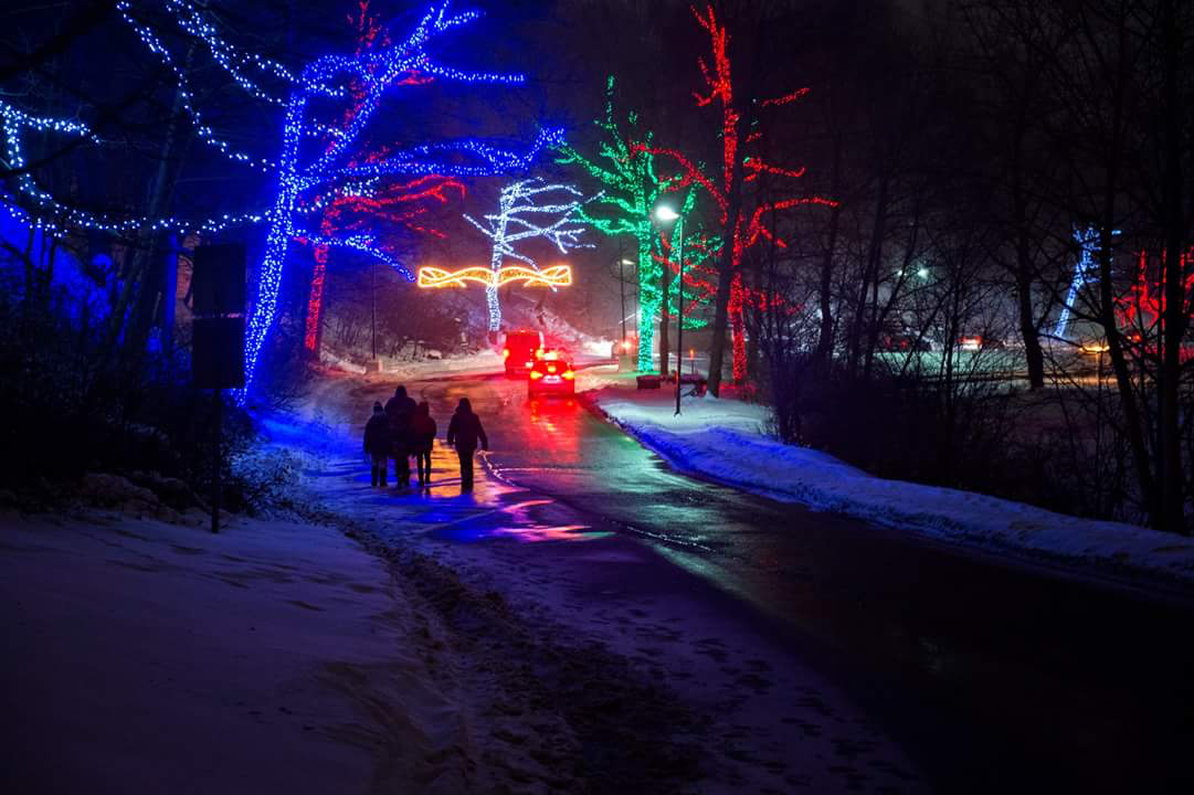 illumination_route_from_winter_festival_of_lights